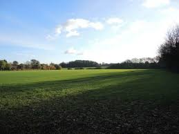 stop plans to build homes on green belt at lye green nr chesham