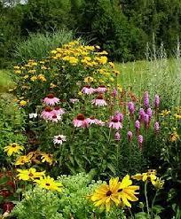 Designing Flower Beds Best 25 Perennial Gardens Ideas On Pinterest Perennials Summer