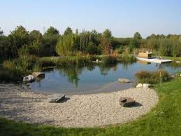 Backyard Swimming Ponds by 384 Best Natural Pools Images On Pinterest Natural Pools