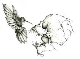 death of a humming bird by tpeteuil on deviantart