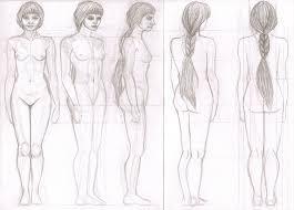 female anatomy study by serpentyl on deviantart