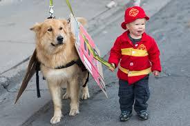 Dog Halloween Costumes Kids Kids Pets Matching Costumes Parent Society