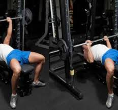 Proper Bench Form Bench Press Muscleseek