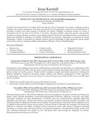 an example of a resume lukex co