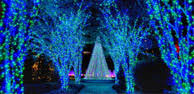 Stone Zoo Christmas Lights by Christmas Events In Atlanta Things To Do At Christmas In Atlanta