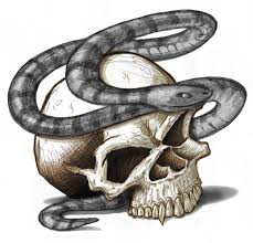 skull and snake tattoo picture
