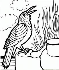 crow bird coloring free crow coloring pages