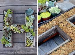 diy this succulent letter frame in under 30 minutes all things
