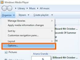 Organize Media by Increase Video Streaming Speed In Windows Media Player