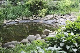 37 backyard pond ideas u0026 designs pictures