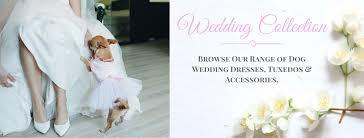 Dog Wedding Dress Buy Dog Dresses Online 1 Dog Clothing Shop Dress Your Doggy