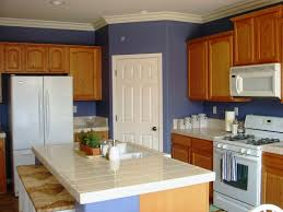 Ideas To Paint Kitchen Simple Painting Kitchen Countertops Ideas Home Inspirations Design