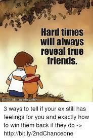 True Friend Meme - hard times will always reveal true friends fbdavid avocado wolfe 3