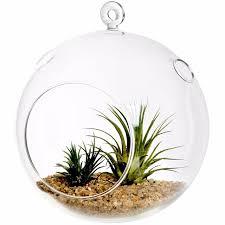 hanging ornament glass vase cristal hinterland 6