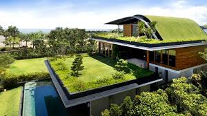 Ten Insights For Designing EcoFriendly Green Homes Home Design - Eco home designs