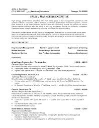 Director Of Development Resume 100 Software Development Resume Software Developer Resume