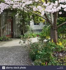 Botanical Gardens Seattle Hiram M Chittenden Locks And Carl S Jr Botanical