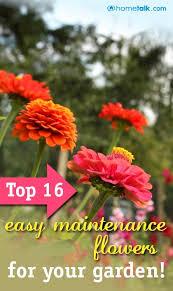 77 best diy gardening ideas images on pinterest gardening