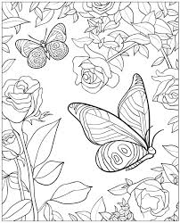 dover publications creative haven beautiful butterfly