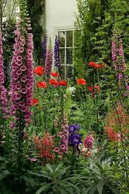453 best cottage garden images on pinterest flowers gardens and