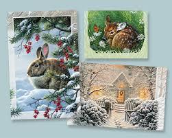 pumpernickel press wildlife cards pumpernickel press our artists