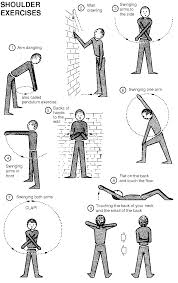 shoulder workouts health fitness training