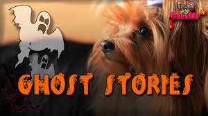 cat dog scary ghost stories halloween special fight my monster