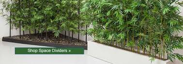Room Dividers And Privacy Screens - 5 step shopping privacy screens at artificial plants unlimited