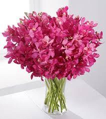 orchid bouquet moments orchid bouquet royal fleur florist larkspur ca 94939