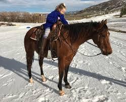 Nice Hourse Heber Valley Horse Sale