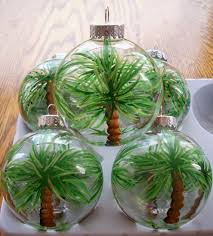 adorable actual tiny palm trees inside a clear
