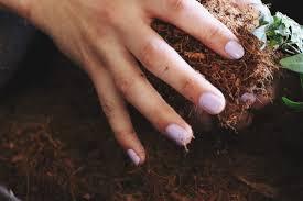 Fiber Soil by Diy Kokedama
