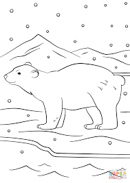 winter bear coloring page free printable coloring pages