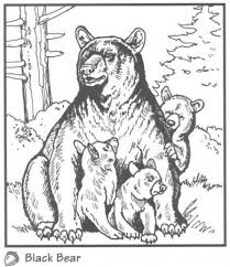 coloring page of a black bear coloring style pages throughout