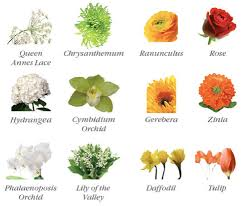 wedding flowers names guide to wedding flowers idojour