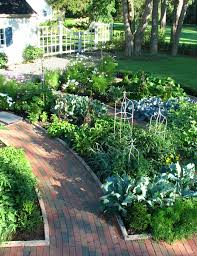 grow your own food the edible landscape