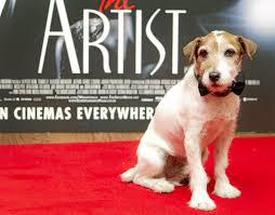 uggie dog in u0027the artist u0027 dies at 13 u2013 daily news
