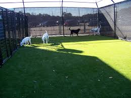 artificial pet turf ultrabasesystems