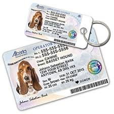 alberta driver licence custom tags for pets 2