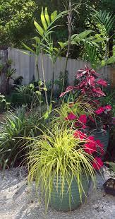 how to grow a spectacular container garden