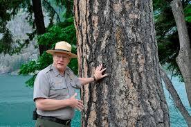 National Park Ranger Resume Retired Forester Ken Hires Finds Calling In National Parks The