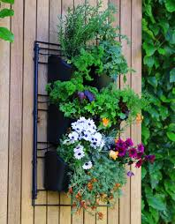 Garden Wall Systems by Wall Mounted Planting Kit Holman Industries