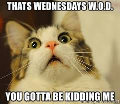 You Gotta Be Kidding Me Meme - thats wednesdays w o d you gotta be kidding me omg cat 2 meme