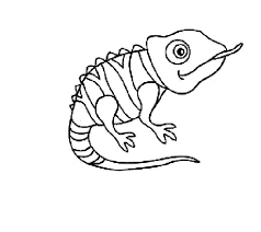 disney tangled pascal chameleon coloring pages place