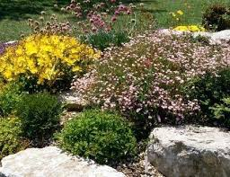 Colored Rocks For Garden Landscaping Rocks Types Large Large Size Of Idyllic Decorative