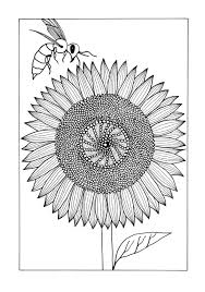 vividly intricate sunflower coloring page favecrafts com