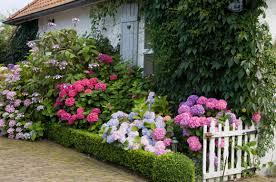 English Cottage Gardens Photos - how to make an english garden rolitz
