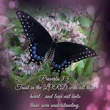 321 butterfly bible quotes images bible
