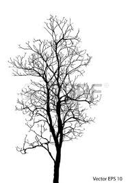 dead tree without leaves vector illustration sketched royalty free