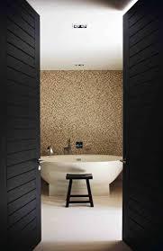 Bathroom Doors 59 Best Doors Images On Pinterest Doors Front Entry And Modern
